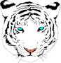 Tiger Team Website
